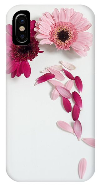 Pink Gerbera Daisies IPhone Case