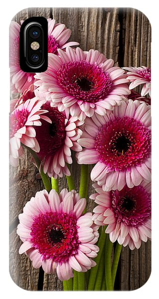 Pink iPhone Case - Pink Gerbera Daisies by Garry Gay