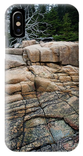 Pink Granite And Driftwood At Schoodic Peninsula In Maine  -4672 IPhone Case