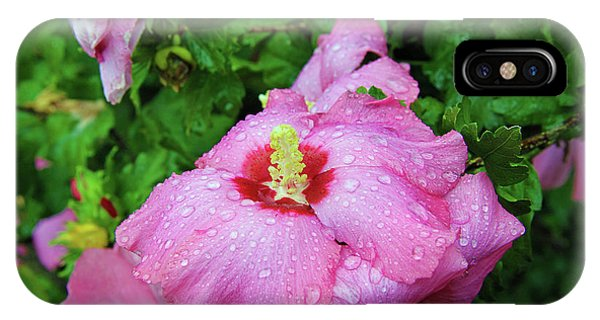 Pink Hibiscus After Rain IPhone Case