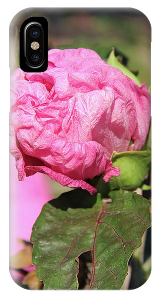 Pink Hibiscus Bud IPhone Case