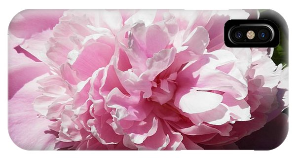 Pink In Bloom IPhone Case