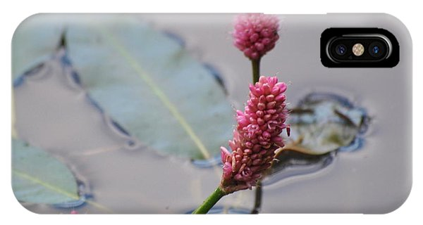 Pink Lily Pad IPhone Case