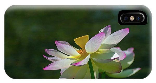 Pink Lotus Embracing The Sun IPhone Case