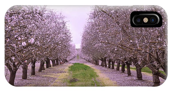 iPhone Case - Pink Orchard Trees by Kathy Yates