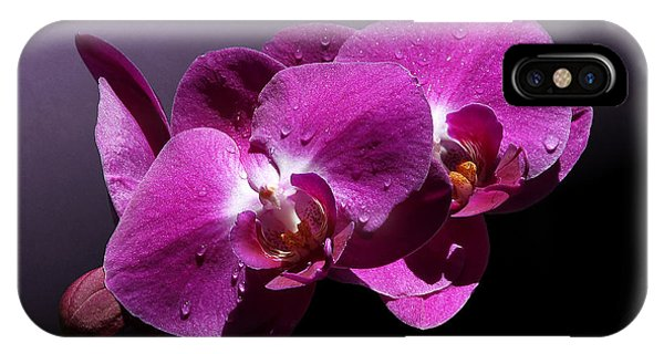 Pink Orchid Flowers IPhone Case
