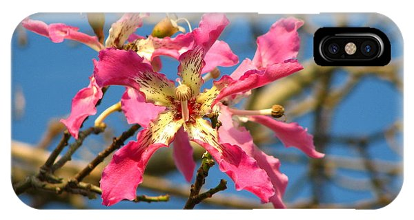 Pink Orchid Tree IPhone Case