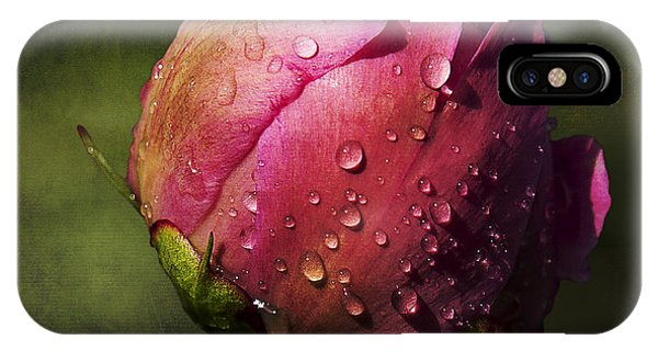 Pink Peony Bud With Dew Drops IPhone Case