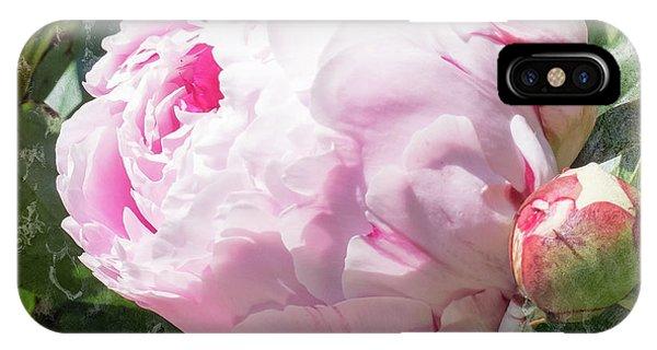 Pink Peony IIl IPhone Case