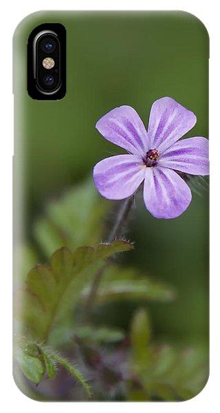 Pink Phlox Wildflower IPhone Case