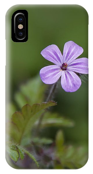 Pink Phlox Wildflower IPhone Case