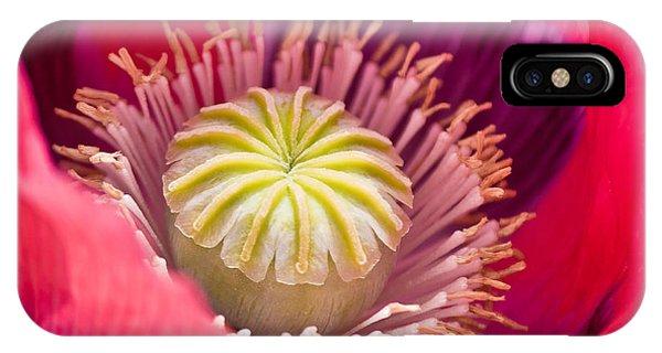 Pink Poppy Flower IPhone Case