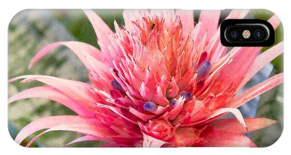 Pink Protea Art IPhone Case