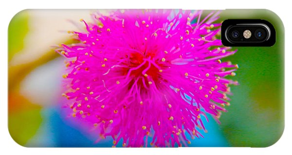 Pink Puff Flower IPhone Case