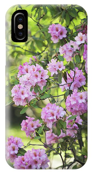 Buy Art Online iPhone Case - Pink Rhododendron Bloom by Jenny Rainbow
