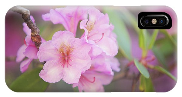 Buy Art Online iPhone Case - Pink Rhododendron Flowers by Jenny Rainbow