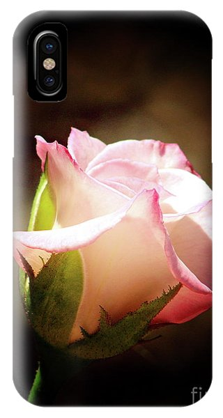 Pink Rose 2 IPhone Case