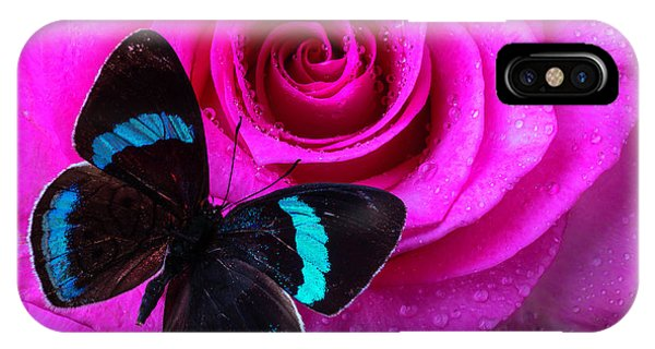 Pink Rose And Black Blue Butterfly IPhone Case