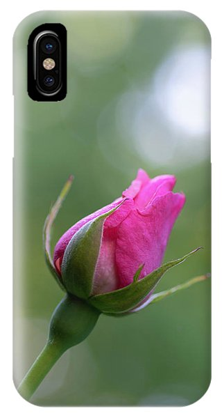 Pink Rose Bud IPhone Case