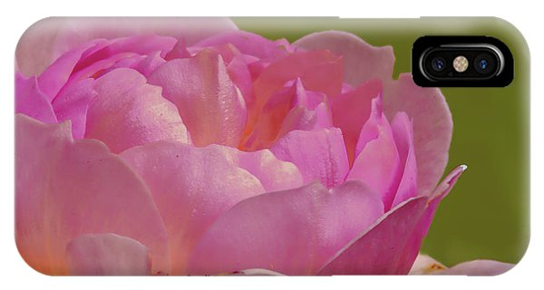 Pink Rose #d3 IPhone Case