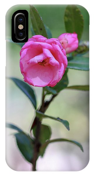 Pink Rose Flower IPhone Case
