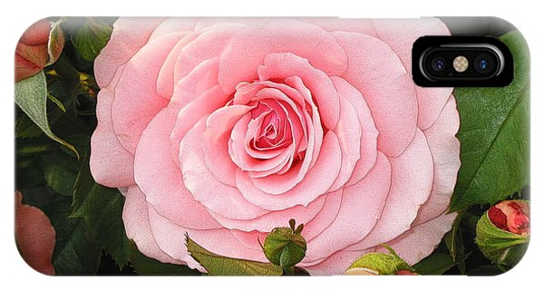 IPhone Case featuring the photograph Pink Rose - Rose Rose by Nature and Wildlife Photography