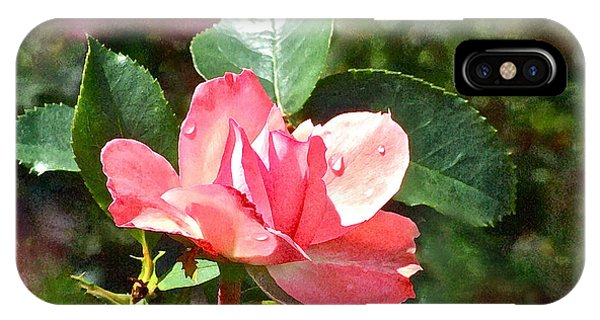 Pink Roses In The Rain 2 IPhone Case