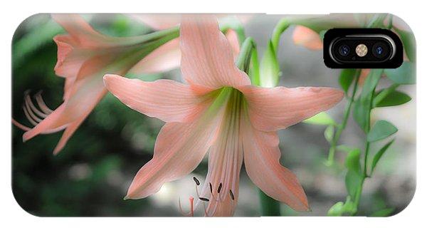 Pink Softness IPhone Case