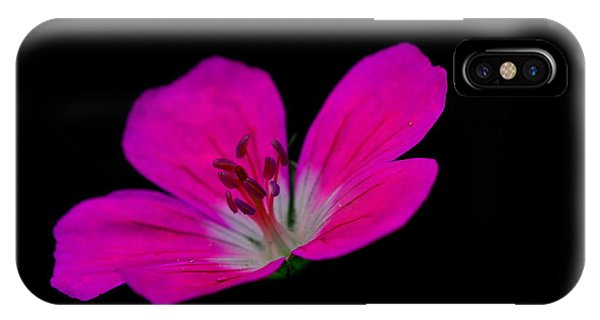 Pink Stamen IPhone Case