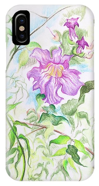 Yellow Trumpet iPhone Case - Pink Trumpet Vine by Bonnie See