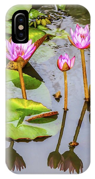 Pink Water Lilies In A Pond IPhone Case