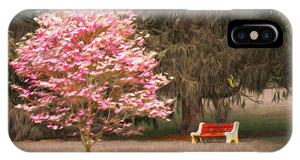 Pinky And The Bench - Impressionism IPhone Case