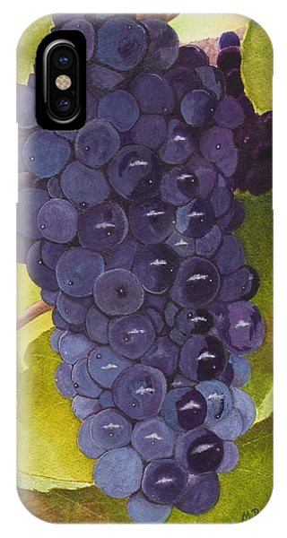Pinot Noir Ready For Harvest IPhone Case