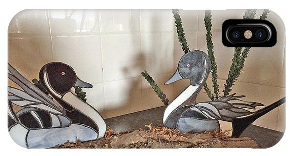 Pintail Ducks IPhone Case