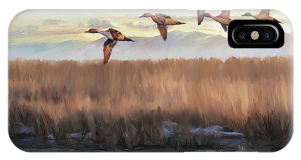 Pintail Fly By IPhone Case