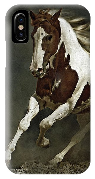 Pinto Horse In Motion IPhone Case