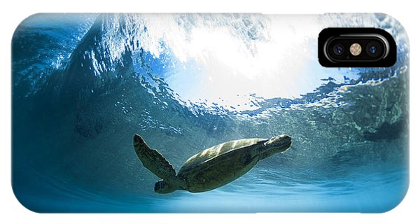Pipe Turtle Glide IPhone Case