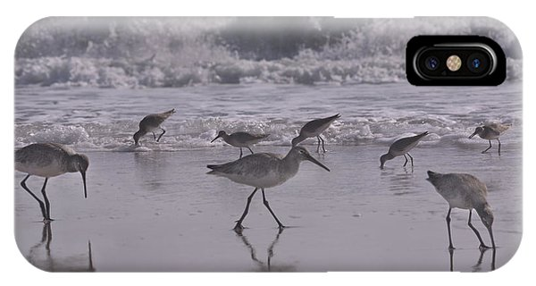 Sandpiper iPhone Case - Piper Paradise by Betsy Knapp