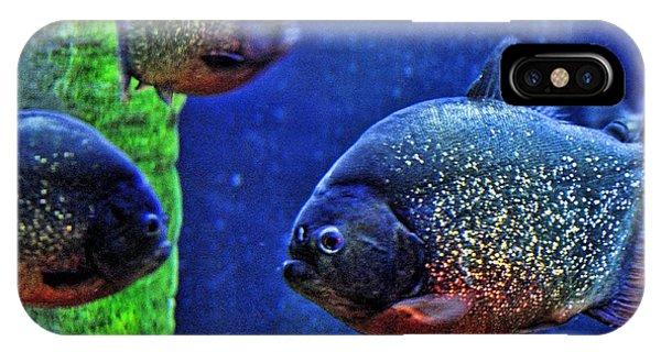 Piranha Blue IPhone Case