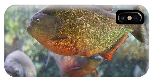 Piranha IPhone Case