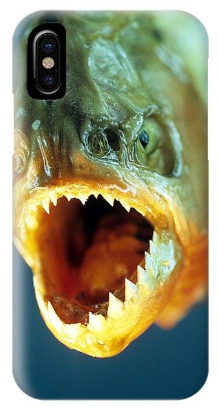 Piranha's Mouth IPhone Case