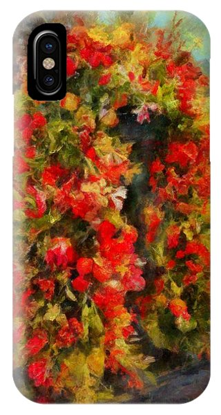 Pi's Flowers 2 IPhone Case