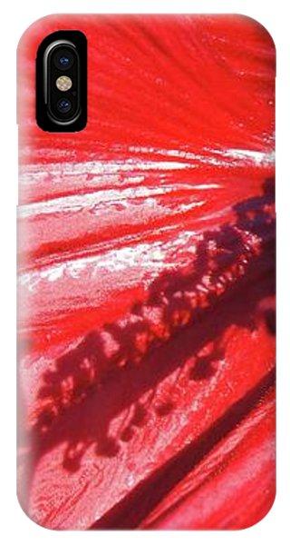 iPhone Case - Pistil Shadow by Megan Cohen