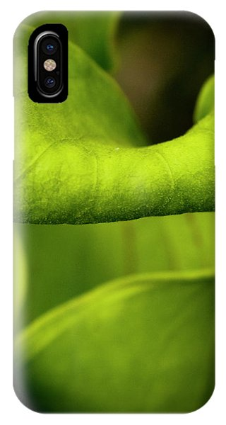 Pitcher Plant Abstract IPhone Case