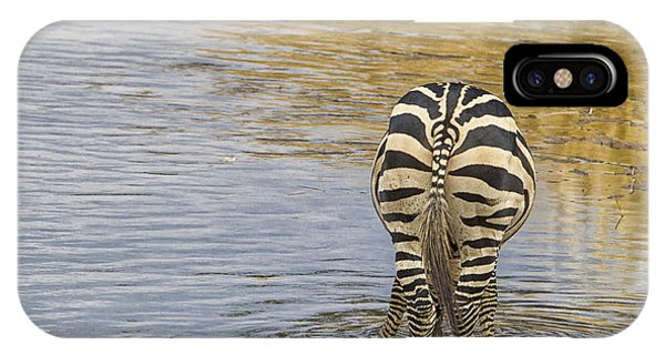 Plains Zebra IPhone Case