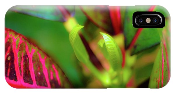 Plants In Hawaii IPhone Case