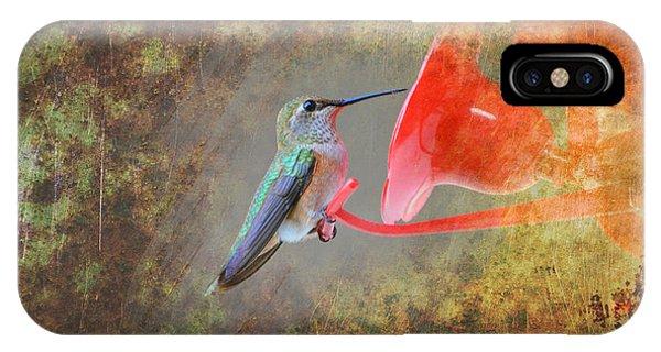 Plate 153 - Hummingbird Grunge Series IPhone Case