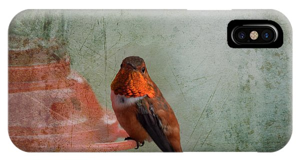 Plate 164 - Hummingbird Grunge Series IPhone Case