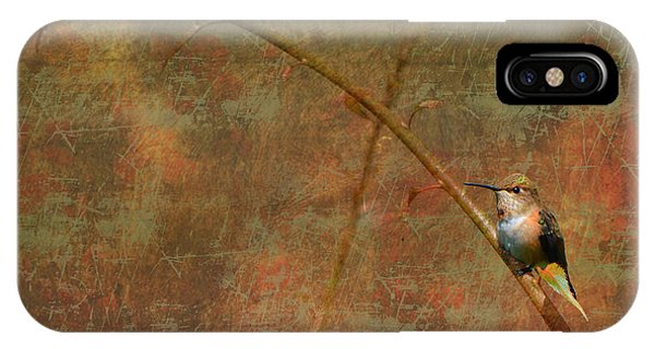Plate 225 - Hummingbird Grunge Series IPhone Case
