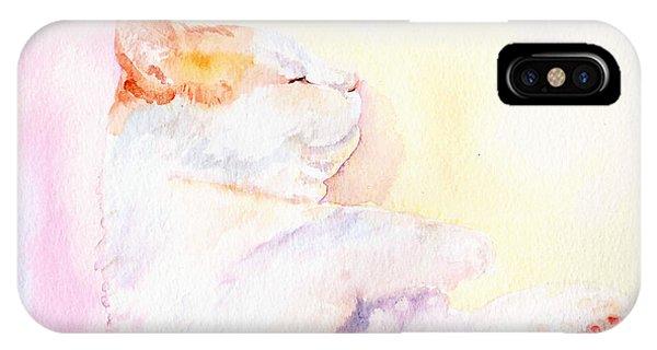 Playful Cat Iv IPhone Case